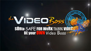 video boss review 2011 Video Boss Review