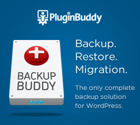 Click here to see Backup Buddy in action